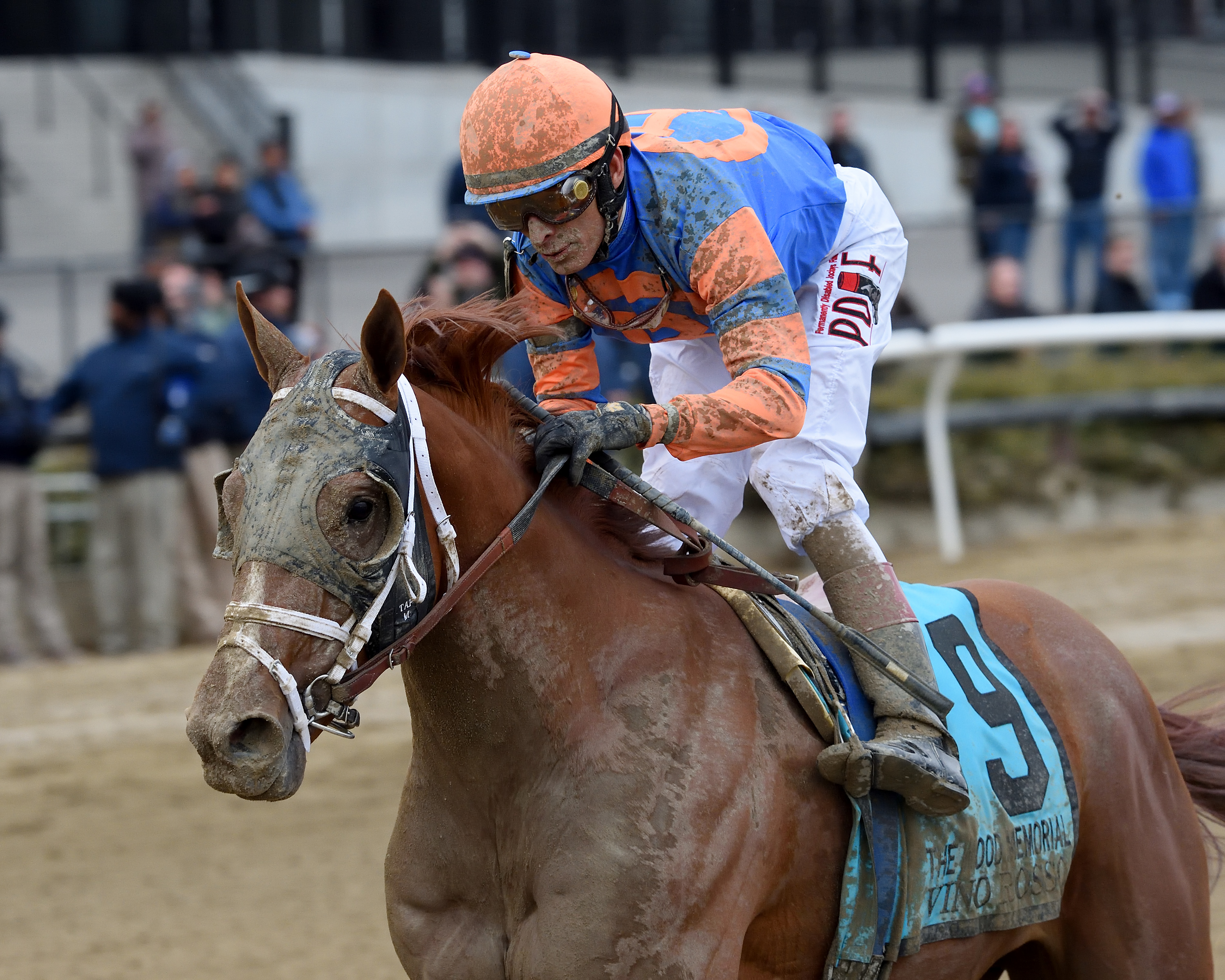 Losing Owner Ignites a Triple Crown Brouhaha