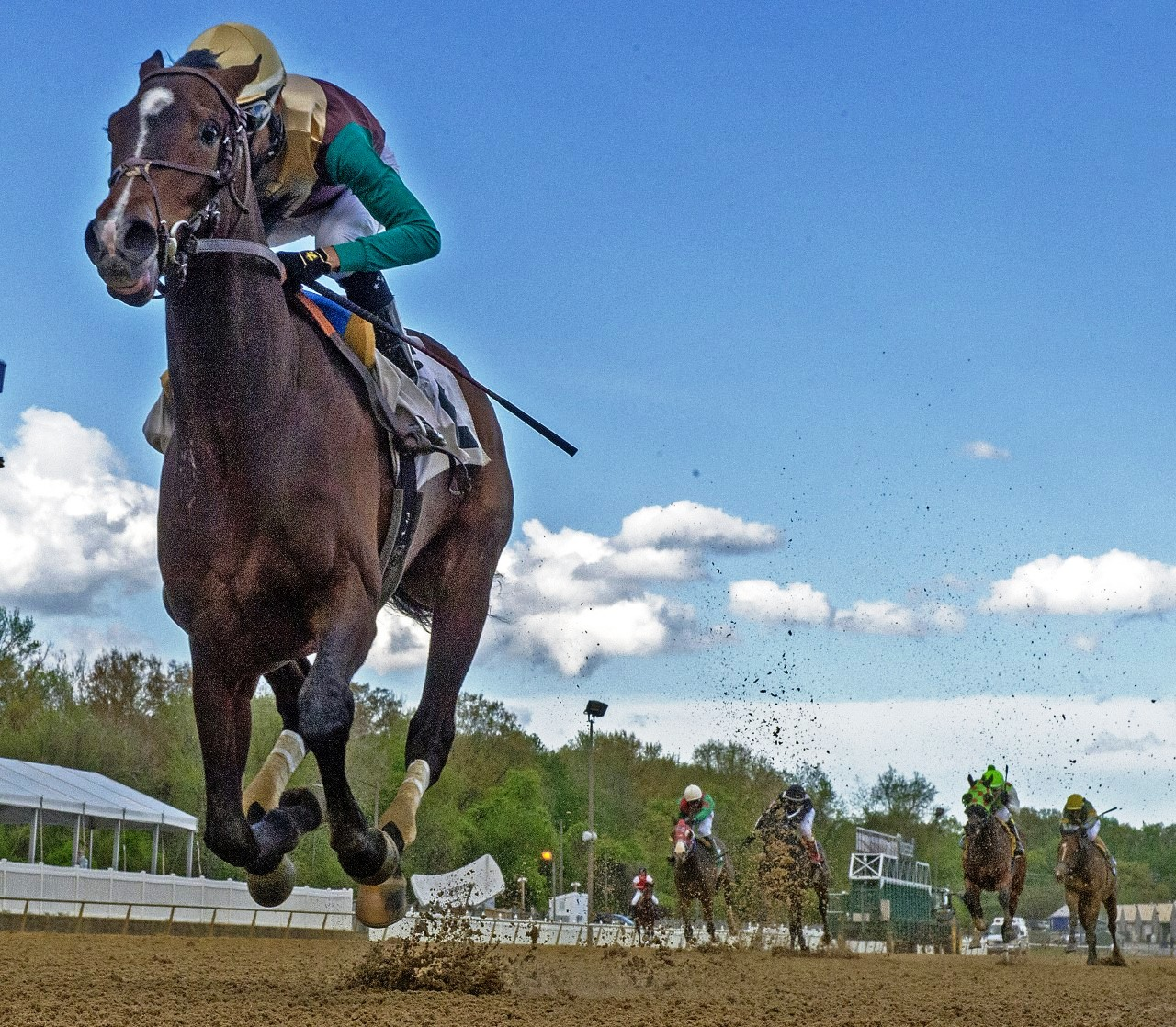 Lack of Derby winner but no lack of value in Preakness   VSiN ...