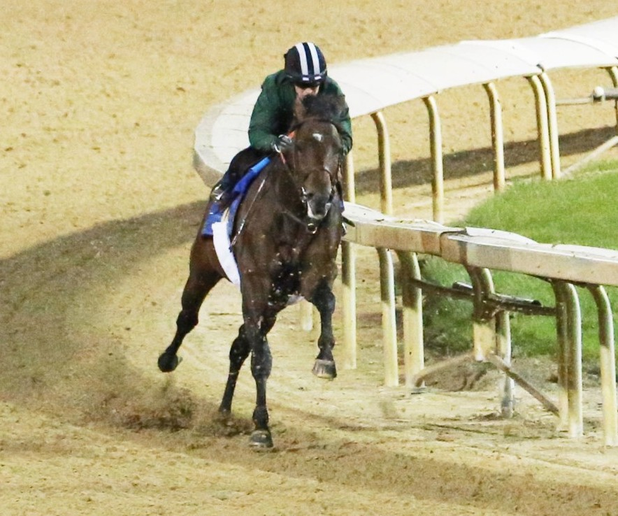 Lone_Sailor_-_Churchill_Downs_Coady_Photography