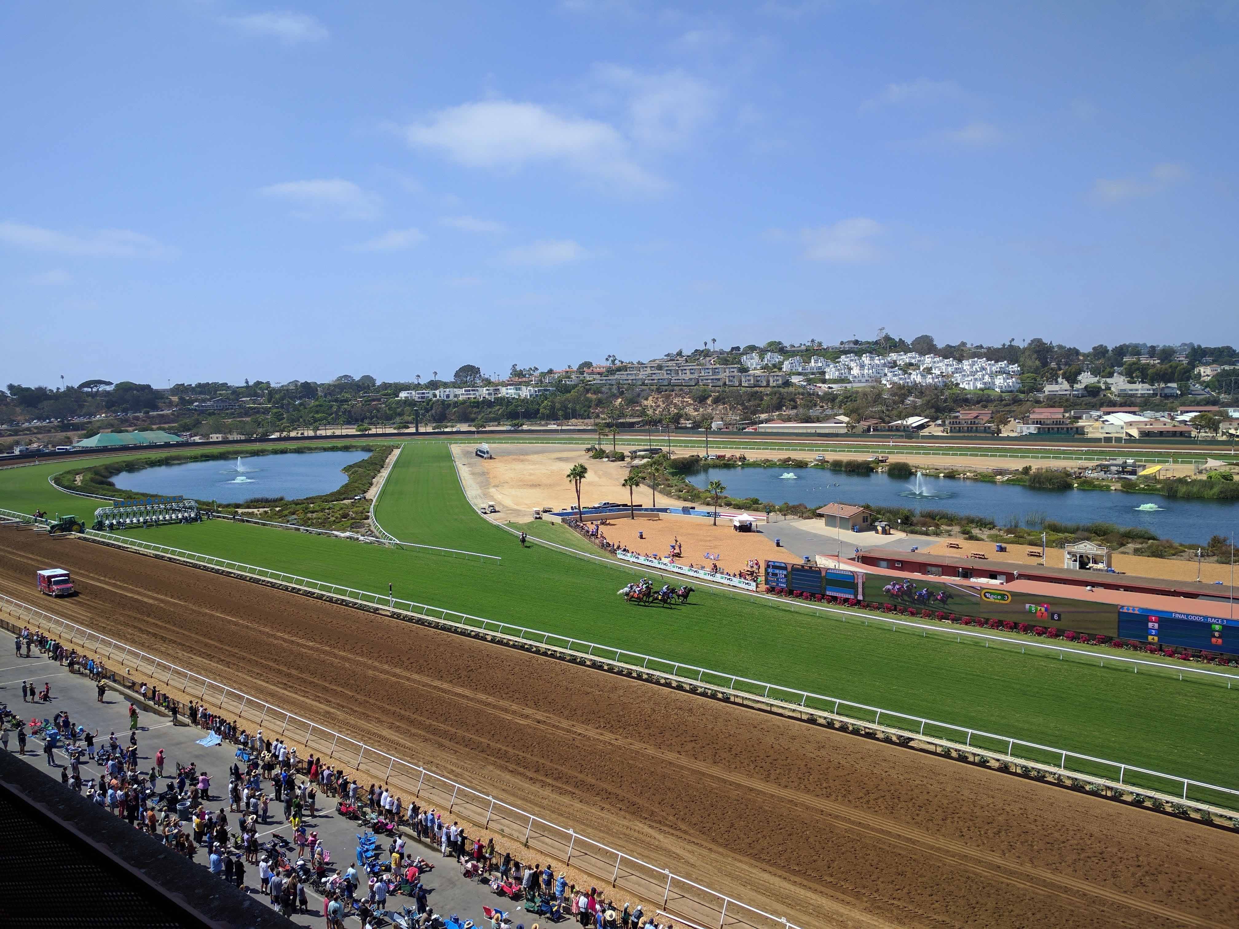 Handicapping Breeders Cup Proves To Be Specialty Sport