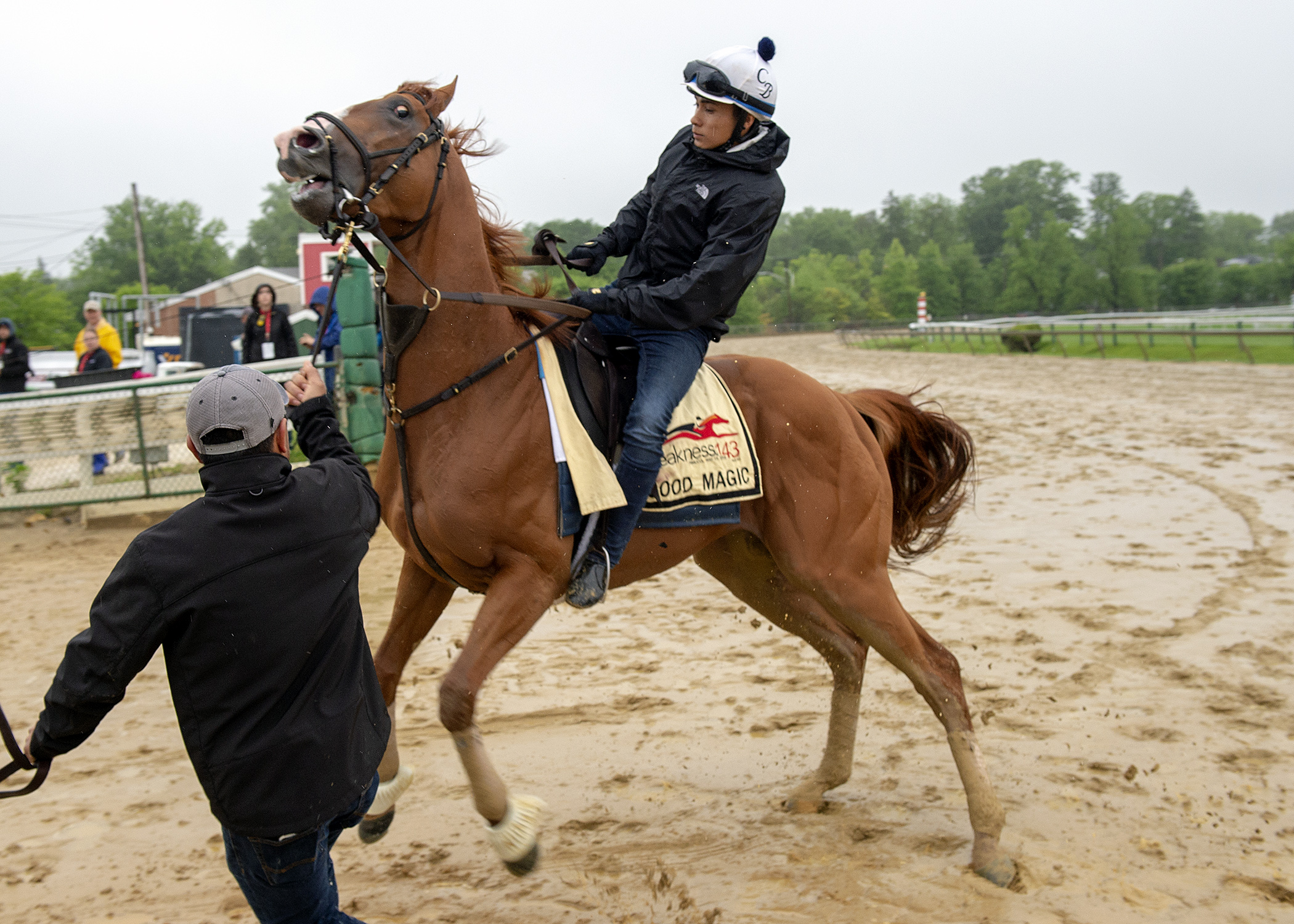 Rain Does Not Dampen Preakness Expectations For Justify Vsin Exclusive News News Vsin