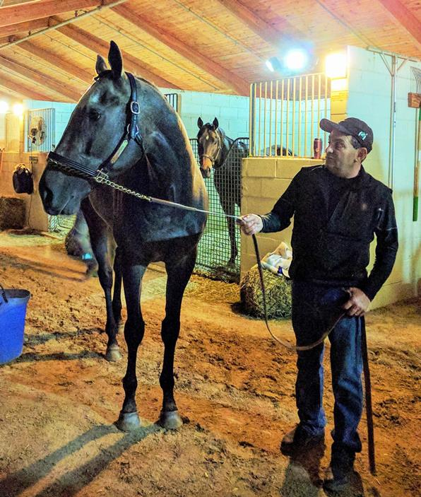 Arrogate_and_Jimmy_Barnes