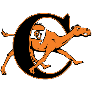 Fighting Camels